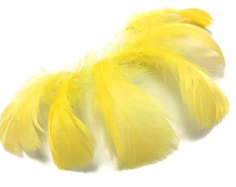 "Yellow Feathers, 1/4 Lb - Yellow Goose Coquille 2-3"" Loose Wholesale Feathers (Bulk) : 4163"