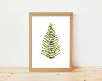 fern leaf drawing, leaf drawing, fern leaf, leaf print, fern illustration, botanical drawing, botnical print, fern drawing, fern leaf print
