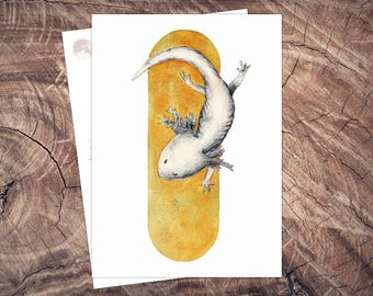 Hello Axolotl-Animal protection postcard illustration A6, printing on recycled paper, eco, climate neutral