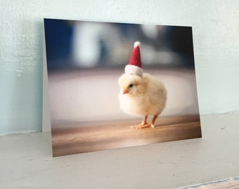 Christmas Card Chick in Santa Hat Folded Chicken Funny Holiday Stationary