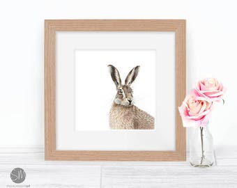 Hare Coloured Pencil Drawing Framed Print Artwork by artist Stacey Moore