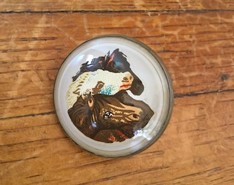 Antique Brass and Glass Horse Reign Rosette