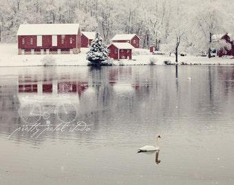 Snow Photograph, Red Barn, White Swan, Snow Art, Maryland Landscape, Lake Photo, Winter Wonderland, Winter Scene, Farm Life, Print, Wall Art