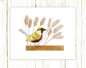 Chestnut-Sided Warbler Print -- bird art -- blue bird art 52 birds stephanie fizer coleman illustration