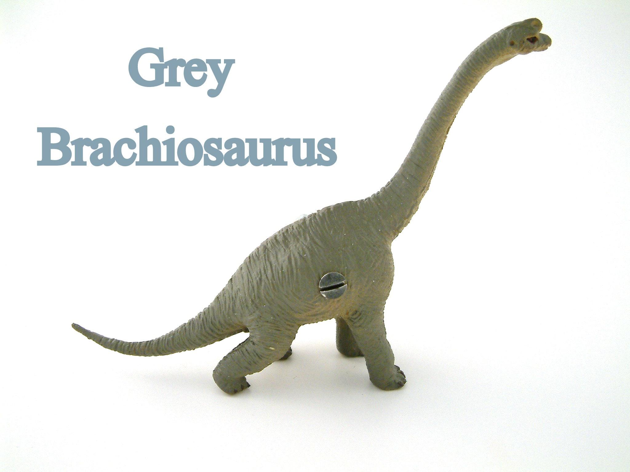 Dinosaur Knobs, Dinosaur Drawer Knobs, Dinosaur Door Knobs, Dinosaur ...