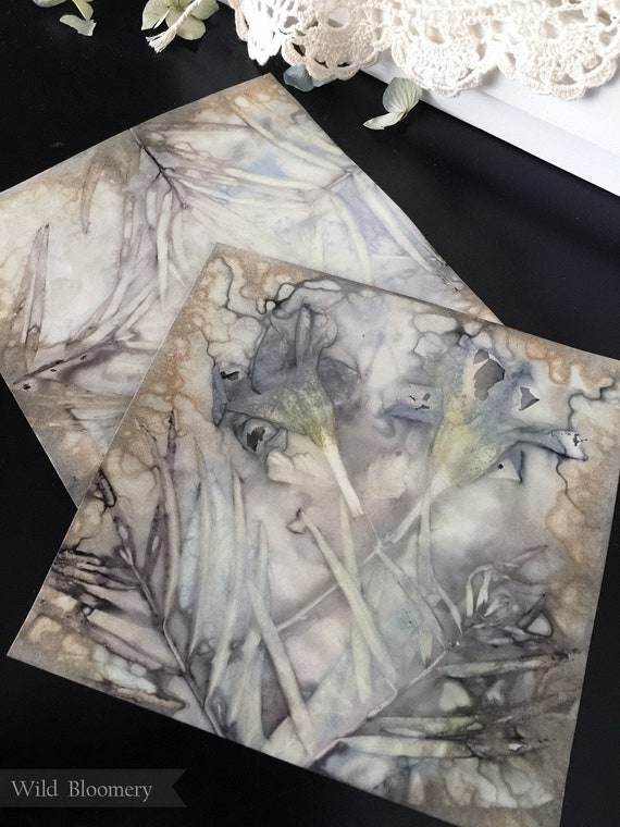 ECO Printed Paper 6 inch Square Tiles Batch No. 0002 - 6 in Square, 110 lb Cardstock ECO Dyed Paper - Plant Dyed Boiled Paper Art Prints