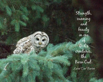 BARN OWL - Classic Folded Notecard with Envelope - Nature Photography with Inspirational Message, 5x7 Inches, Blank Inside