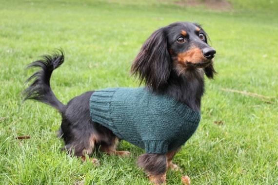 Knitting Pattern Mini Dachshund Dog Sweater Cloud 9 Pet