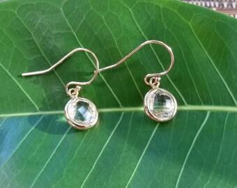 Elegant crystal 14Kt gold filled hook earrings