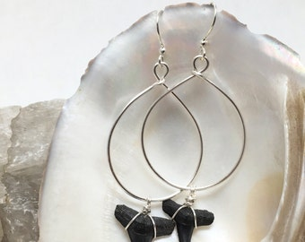 Bite-Back Hoops - Fossilized Shark Teeth Earrings - Natural Fossils - Silver-plated wire - Prehistoric  Beauty