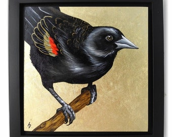 Red Wing Blackbird painting - original red-winged black bird art block - metallic gold leaf - realistic bird painting - floater frame square
