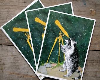 Raccoon and Telescope Postcard