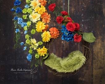 Rainbow Wreath digital photography prop