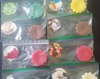 Assorted Wax Tarts