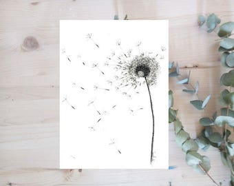 Poster - Dandelion - ink series - Limited Edition