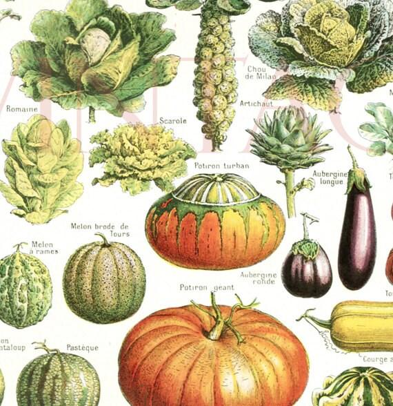 Kitchen Decor Vegetables: Vegetables Print 1948 Vintage Kitchen Decor Vegetable Poster