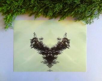 Printable art, digital download, mirror photograph, botanical wall art, greenery, mirror image, conifer, antler photograph, antlers