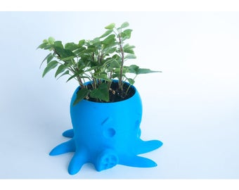 Cute Octupus Succulent Planter for home or office