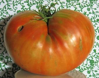 Donskoi Heirloom Giant Tomato Seeds