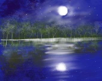 Starry Blue Night