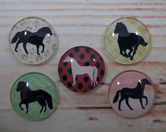 Horse Lover Fridge Magnets, Glass Kitchen Magnets, Set of 5, Kitchen Decor, Hostess Gift, Housewarming Gift, Office Decor, Locker Magnet