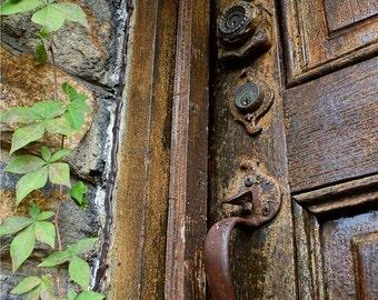 Art Photo Wooden Door and Stone Wall with Hanging Vine - 9x12 Autumn Art Photograph - Rusty Door Handle - Abandoned Old Building Photo Art