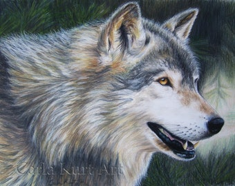 Timber Wolf by Carla Kurt signed art print
