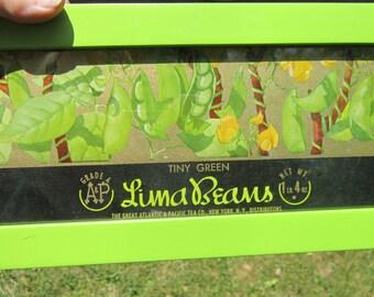 Vintage Framed Original Lima Beans Unused Can Label OOAK Golden Background Great Gift For A Gardener Eat Your Veggies!