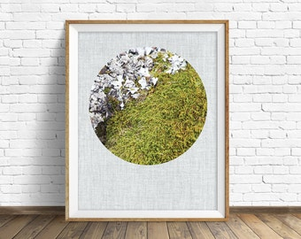 """nature photography, moss, large art, large wall art, printable art, instant download printable art, nature prints, art - """"Forest Moss No. 1"""""""