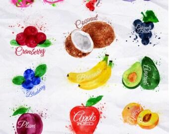 Fruit Watercolor