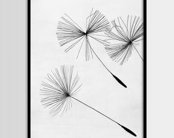 Dandelion, Plant print, Minimalistic, Modern art, Wall decor, Digital art, Printable, Digital poster Instant Download 8x10, 11x14, 16x20