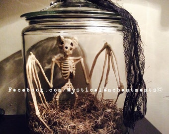 Large Glass Bat Skeleton Apothecary Jar Halloween Prop