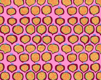 Spring 2018 by Philip Jacobs for Free Spirit - Pomegranate - Pink - FQ - Fat Quarter Cotton Quilt Fabric