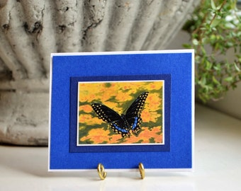 A tiny gift tag print of a Black Swallowtail Acrylic painting