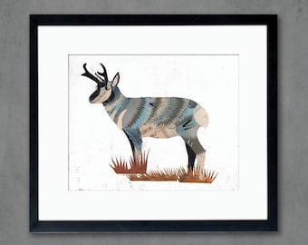 Animals of North America: Pronghorn Antelope Art Print