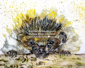 Hedgehog art print- Bramley wood collection 2016. Ref BWC005_HE