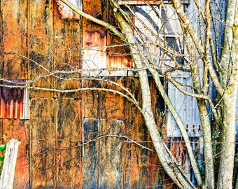 At the Back of the Barn : archival quality fine art photography, horizontal format, landscape