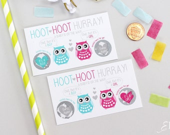 10 Baby Gender Reveal Scratch Off Cards - Guess the gender Owl Whoo Will It Be?