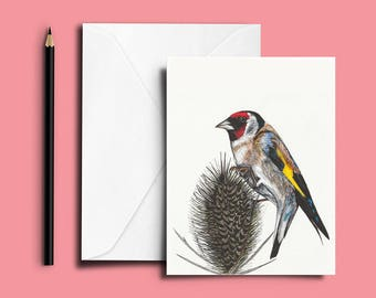 Goldfinch Greetings Card, Goldfinch Card, Goldfinch Blank Card, Bird Lovers Card, Bird Card, Bird Greetings Card