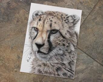 Cheetah Original Drawing