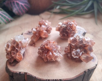 Small Aragonite Crystal Cluster - Awesome Decorative Accent for your Terrarium or Fairy Garden - , Terrarium Supplies, Rocks and Minerals