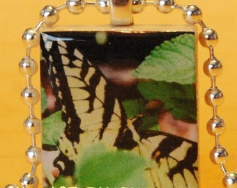 Scrabble Tile Photo Pendant Swallowtail Butterfly XO161