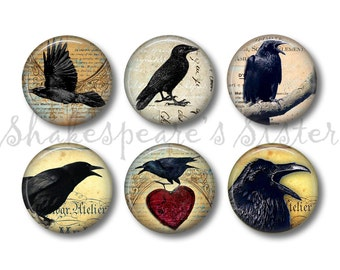 Crow Art - Fridge Magnets - Crow Magnets - 6 Magnets - 1.5 Inch Magnets - Kitchen Magnets