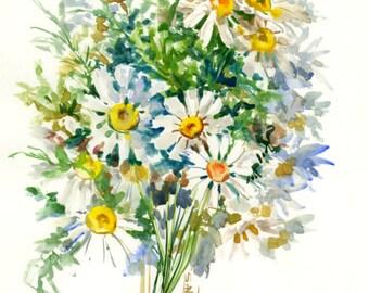 Artwork Chamomiles, Chamomile flowers, wild flowers, floral, vintage artwork, flowers, herbs, original watercolor painting
