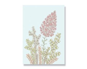 SALE Wildflower A4 Illustration Print - 80% off