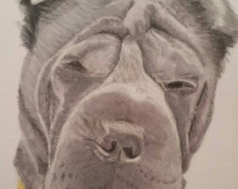 Pet Portrait, Dog Portrait, Dog Drawing, Portrait, Pet Picture, Wall Art, Custom, Home Decor, Dog Picture, Dog Lover, Pet Memorial, Special