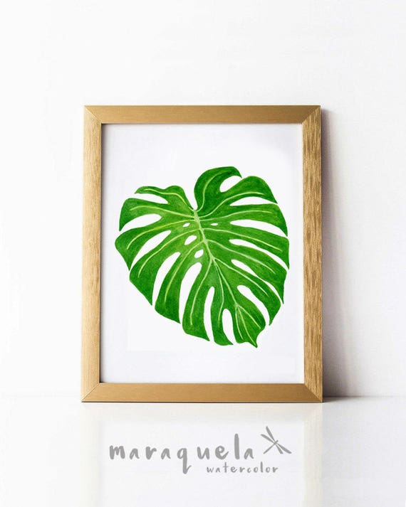 Monstera Leaf II Watercolor, Tropical Plants Botanical art, Green leaf Nature art, Spring decor, Monstera leaf watercolor original painting