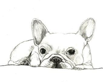 French Bulldog Art - Little French Bulldog - Dog Art,Dog Print,Dog Drawing,Dog Decor,Bulldog Art