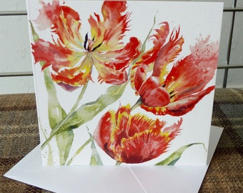 Parrot Tulips, a beautiful Greetings Card from a watercolour by Pauline Merritt