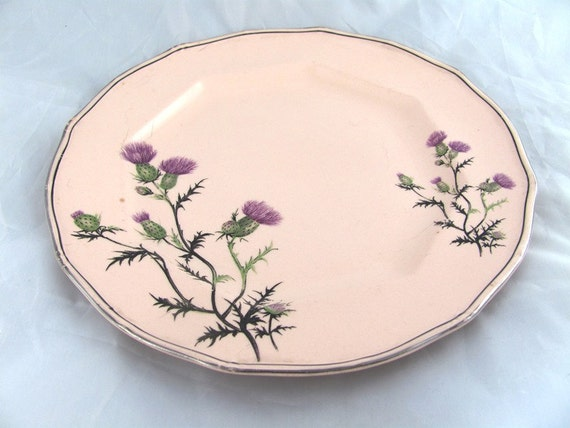 Like this item? & Antique Taylor Smith Taylor Unique Dinner Plate 1800s Pink